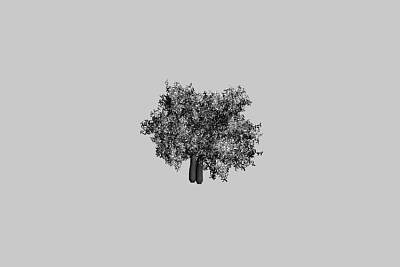 3D精美城市景观树模型