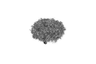 别致的3D景观小矮木3D模型下载