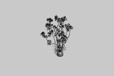 红色花朵的室外植物3D模型下载