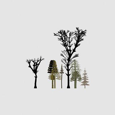 树【合集】