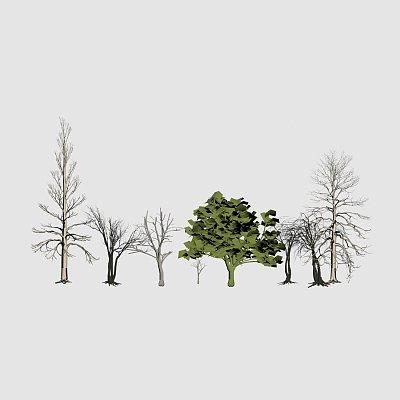 osa52tyu76-trees10