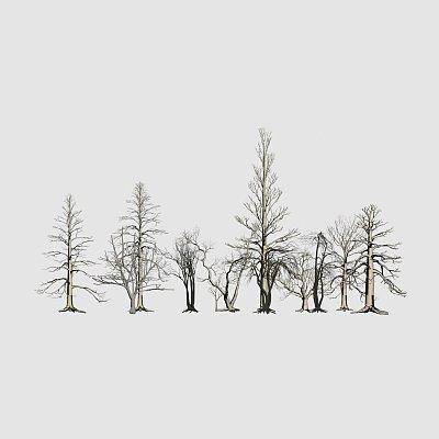 ybxwdtcekz-dead_trees