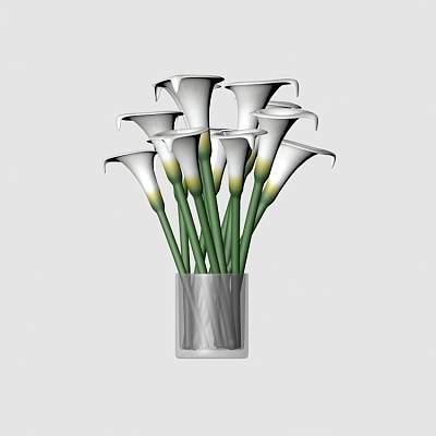 百合花 lily