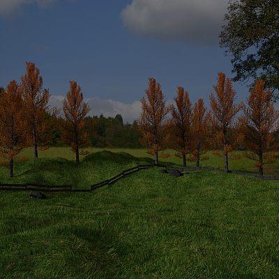 郊野 户外 草地 小树林