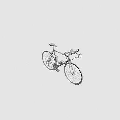 Racing Bicycle