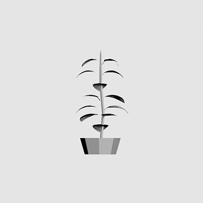 House_plant-1