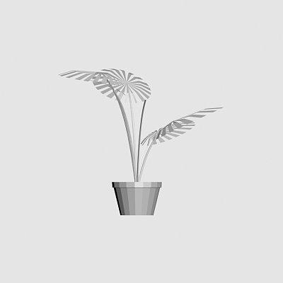 House_plant-3