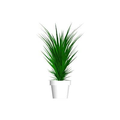 Plant_house-1