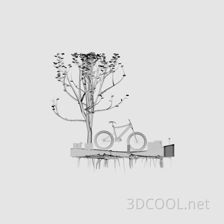 bike w tree