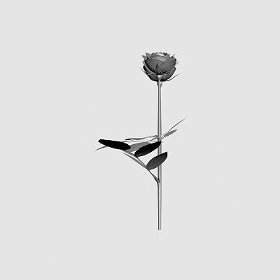 Flower-6